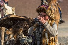 Berkutchi while hunting to the hare with a golden eagles on his arms in the mountains of Bayan-Olgii aimag. SAGSAY, MONGOLIA - SEP 28, 2017: Berkutchi Eagle Royalty Free Stock Images