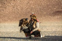 Berkutchi - Kazakh hunter with Golden eagle, while hunting to the hare in desert mountain of Western Mongolia stock image
