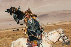Kazakh Eagle Hunter traditional clothing, while hunting to the hare holding a golden eagle on his arm in desert mountain of Wester. SAGSAY, MONGOLIA - SEP 28 Royalty Free Stock Image