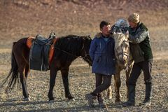 Young men Eagle Hunters standing near their horses during hunting in the mountain desert of Western Mongolia. SAGSAY, MONGOLIA - SEP 28, 2017: Young men Eagle Stock Photos