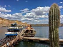 Saguaro湖的小船小游艇船坞在Tonto国家森林,亚利桑那,美国里 库存图片