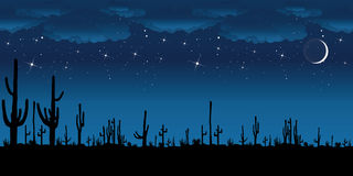 Saguaro Cactus at night. Stock Photo