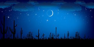 Saguaro Cactus at night. Colorful Vector Landscape. Stock Images
