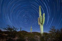 Saguaro Cactus Startrails Nightsky landscape. Iconic Sonoran Desert Saguaro columnar cactus, Carnegiea gigantea, under starry Arizona night sky with circular Royalty Free Stock Image