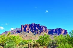 Saguaro Cactus Superstition Mountain Range Blue Skies Arizona stock photo