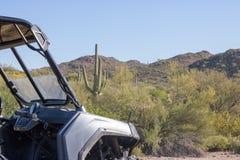 Saguaro e RAZR Immagini Stock Libere da Diritti