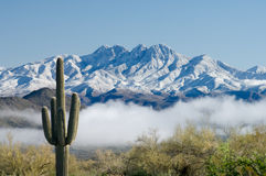Saguaro and Four Peaks. A thick blanket of fog hovers over the Salt River in central Arizona following a winter storm that delivered a fresh coating of snow on Stock Images