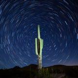Saguaro-Kaktus Carnegiea gigantea Startrails-Nacht Stockfotografie