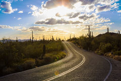 Saguaro National Park. Amazing Sunset Image of Saguaro National Park stock photos