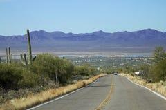 Saguaro-Nationalpark Lizenzfreies Stockfoto