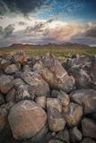 Saguaro-Nationalpark-Petroglyphen stockbilder