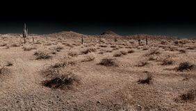 Saguaro Panorama Royalty Free Stock Photography