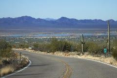 Saguaro park narodowy Obraz Stock