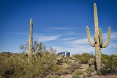 Saguarokaktusrahmen ein Weinlese Luftstrom-Reiseanhänger stockfoto