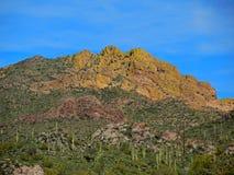 Saguaros ziehen sich vom Ridge zurück stockbild