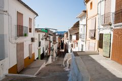 Sagunto. View of Sagunto historic town in Spain Royalty Free Stock Photography