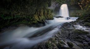 Sahalie понижается водопад - национальный лес Willamette - Орегон стоковые изображения rf