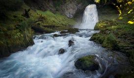 Sahalie baja cascada - bosque del Estado de Willamette - Oregon Imágenes de archivo libres de regalías