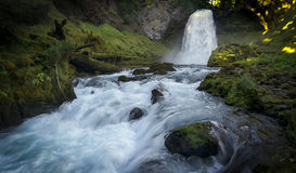 Sahalie cai cachoeira - floresta nacional de Willamette - Oregon imagens de stock royalty free