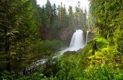 Sahalie fällt auf den McKenzie-Fluss, Oregon, USA Stockfotografie