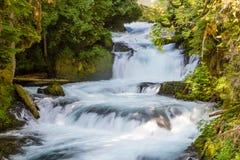Sahalie Falls Stock Image