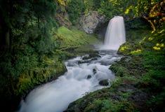 Sahalie tombe cascade - réserve forestière de Willamette - l'Orégon Images libres de droits
