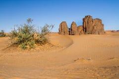 Sahara's-Landschaft Djanet, Süd- Algerien, Nord-Afrika Lizenzfreies Stockbild