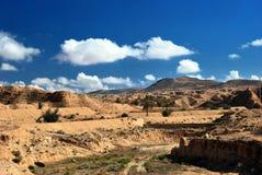 Sahara öken Royaltyfria Bilder