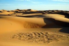 Sahara öken i Sahara Royaltyfri Bild