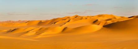 Sahara ökenpanorama royaltyfria bilder