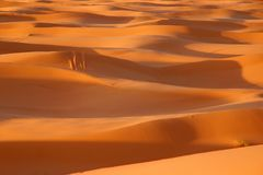 Sahara Royalty Free Stock Photos