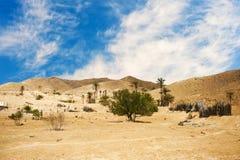 Sahara Stockfoto
