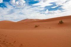 sahara Foto de Stock Royalty Free