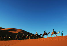 Sahara desert_1 Royalty Free Stock Images
