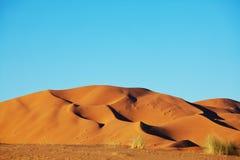 Sahara desert Royalty Free Stock Photography