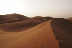 Sahara Desert Lizenzfreies Stockbild