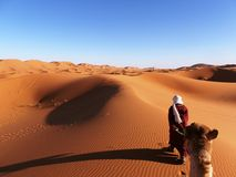 Sahara Desert Immagini Stock