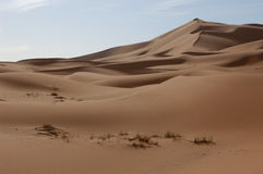 Sahara Desert. The sand dunes of Erg Chebbi in the Sahara Desert near Merzouga, Morocco Stock Photos