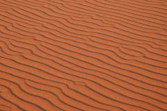 Sahara Desert. The sand dunes of Erg Chebbi in the Sahara Desert near Merzouga, Morocco Royalty Free Stock Photo