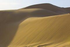 Sahara desert Obraz Stock
