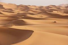 Sahara Desert Royalty Free Stock Photos