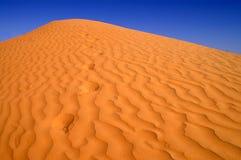 Sahara Desert. African desert in summer of 2008 Royalty Free Stock Images