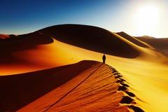 Sahara Desert, Algeria. Sand dune climbing at sunrise, Sahara Desert, Algeria Stock Photography