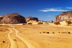 Sahara Desert, Algeria. Road in Sahara Desert, Tadrart, Algeria Royalty Free Stock Photo
