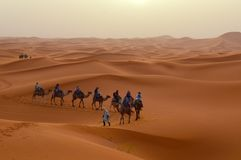 Sahara Desert. A bunch of people riding camels in the sahara desert, moroco Royalty Free Stock Images