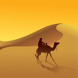 Sahara desert and camel Stock Photos