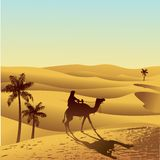 Sahara desert and camel. Sand dune, palm and camel illustration Stock Image