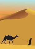 Sahara desert and camel Royalty Free Stock Photography