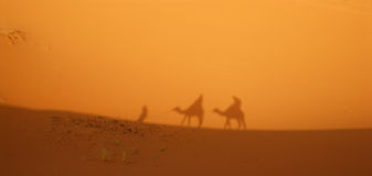 Sahara Desert - Caravan shadow Stock Photo