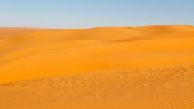 Sahara Desert Dune Stock Images
